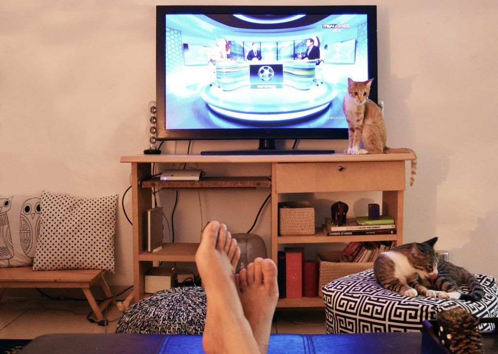 Summer Favourites: Movies and TV Shows