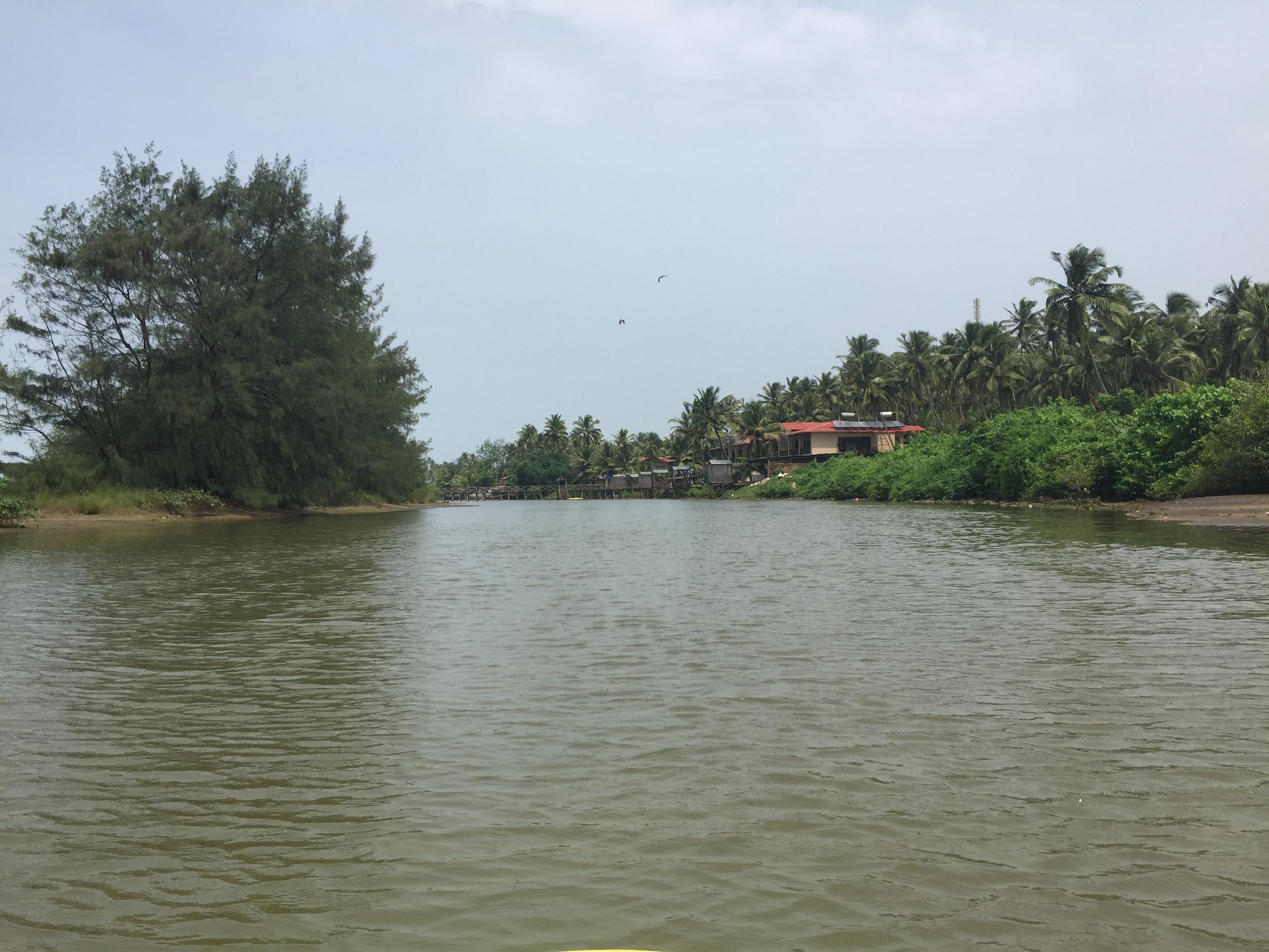 Beautiful goan river