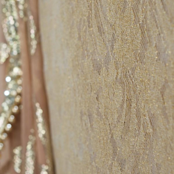 Nude Georgette Sari With Pale Gold Sequins - Fashion and Frappes