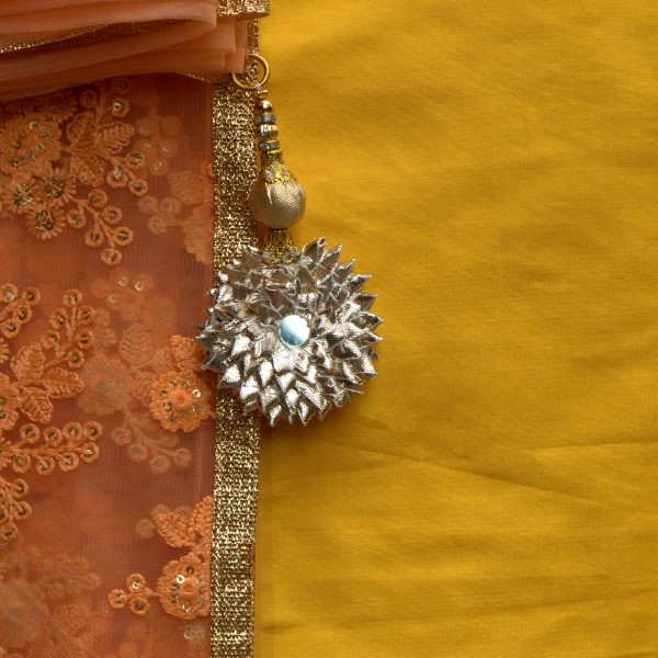 Orange Net Sari With Zari Border - Fashion and Frappes