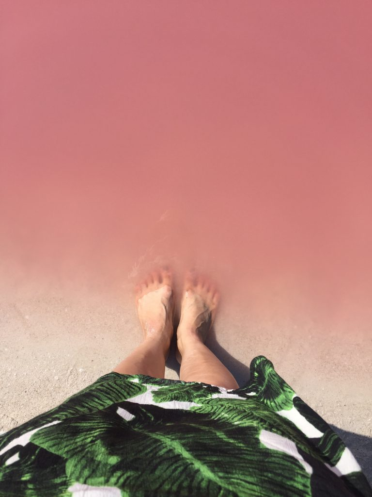 Pink Lake at Los Colarodas Mexico