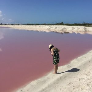 Pink Lake at Los Colarodas Mexico