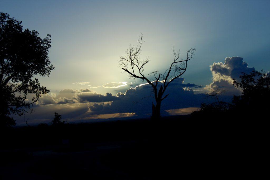 Sunset, Kruger, South Africa